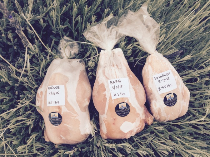 Pastured Poultry available for limited time…